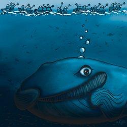 whale stefan2_1